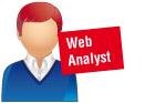 Web analyst
